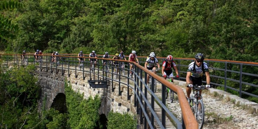 Cycling Istrian peninsula