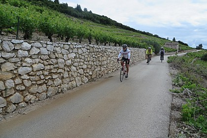 dalmatian-wine-roads-self-guided-bike-tour