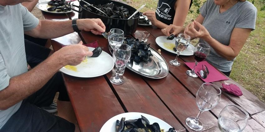 Peljesac biking, wine & oyster tasting