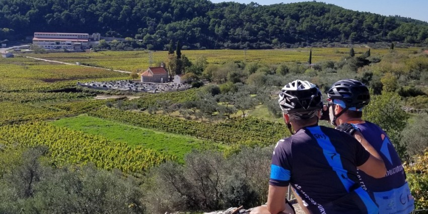 Split – Dalmatian islands – Dubrovnik cycling tour