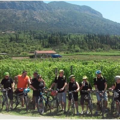 Biking & wine tasting day trip
