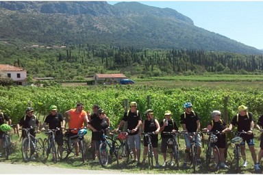 Biking & wine tasting day trip